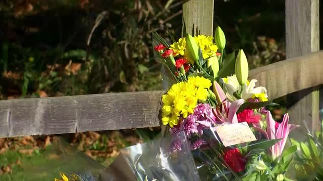 people attend vigil close to her home as police hunt man seen on cctv; england: london: ext vox pop sot gvs of floral tributes. - murder stock videos & royalty-free footage