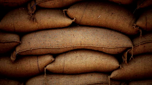 sacks full of grains in burlap bags - cereal plant stock videos & royalty-free footage