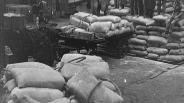1917 montage sacks of grain being unloaded from horse-drawn carts, transported into a warehouse with handcarts, and loaded onto a conveyor belt for stacking / united kingdom - 1917 stock videos & royalty-free footage