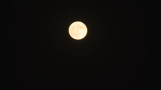 sacramento, ca, u.s, - the harvest moon on night sky on saturday, october 31, 2020. - rymd och astronomi bildbanksvideor och videomaterial från bakom kulisserna