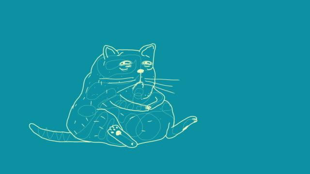 vídeos y material grabado en eventos de stock de gato gordo triste - piel grasa