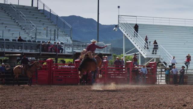 saddle bronc ride in rodeo stadium - saddle stock videos & royalty-free footage