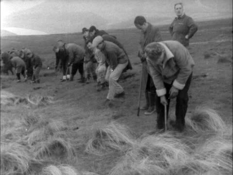 saddleworth moors body search continues; england: yorkshire:saddleworth moors: ext systematic search on lines of military searching a minefields: bv... - itv late evening bulletin点の映像素材/bロール