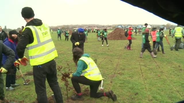 sadiq khan joins trees for cities tree planting event in redbridge; england: london: redbridge: ext sadiq khan digging hole with spade / khan... - planting stock videos & royalty-free footage