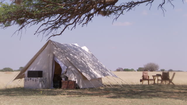 WS Safari camp in shade of tree in midday sun with table and chairs outside / Lindberg, North west, South Africa
