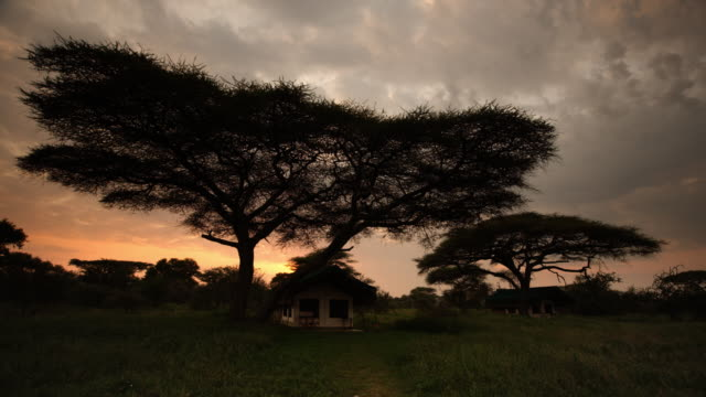 Safari camp sleeping quarters at dawn