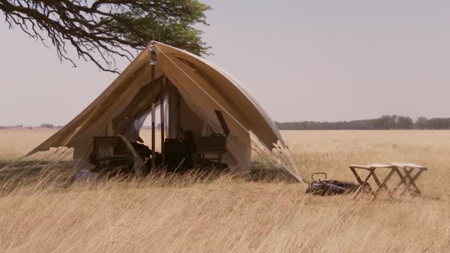 MS Safari camp under tree / Lindberg, North west, South Africa