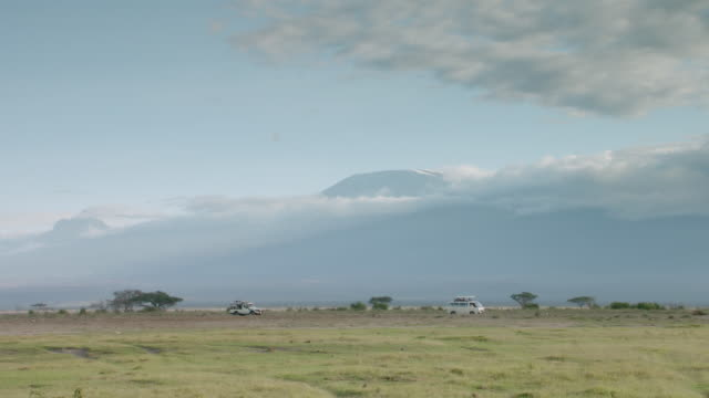 ws safari van with mt. kilimanjaro in background / kenya - 4x4 stock videos and b-roll footage
