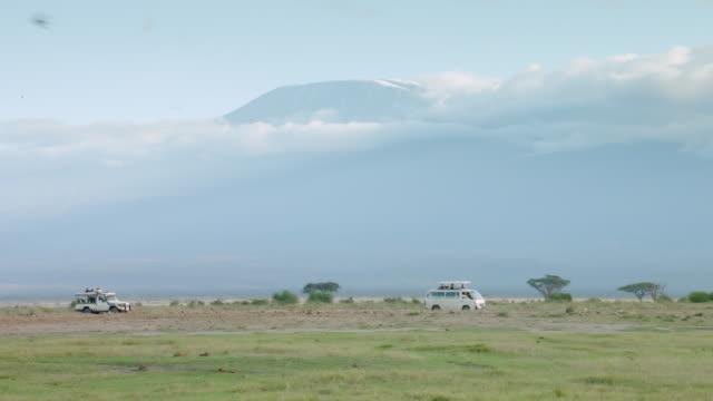 WS Safari vehicles on savanna landscape, Mount Kilimanjaro in background / Kenya