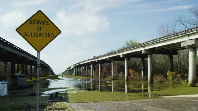 "a safety road sign warning visitors to ""beware of alligators"" sits underneath breaux bridge (interstate 10) while salvinia floats in the atchafalaya river basin swamp surrounded by cypress tree forests in southern louisiana under a sunny but partly cloudy - louisiana stock videos & royalty-free footage"