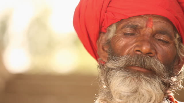 Sage meditating, Faridabad, Haryana, India