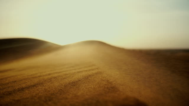 sahara desert at sunset - desert stock videos & royalty-free footage