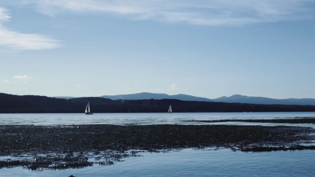 sailboat on hudson river - hudson valley stock videos and b-roll footage