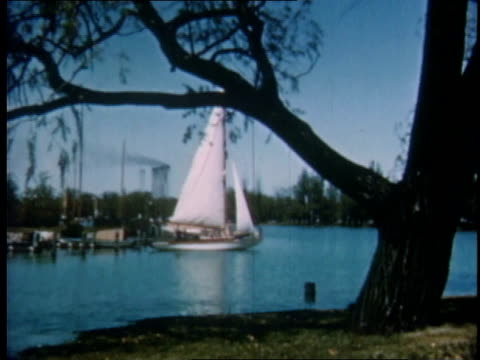 1951 ws sailboating on the detroit river / michigan, united states - detroit river stock-videos und b-roll-filmmaterial