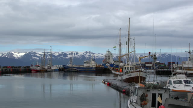 Sailboats at Húsavík harbor with snowcapped mountains in the back, Northern Iceland