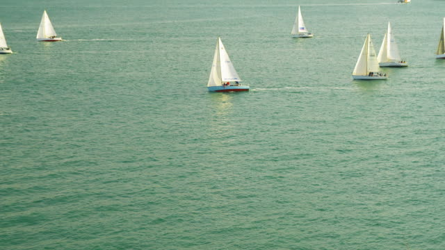 sailboats float in waitemata harbor in new zealand. - aquatic sport stock videos & royalty-free footage
