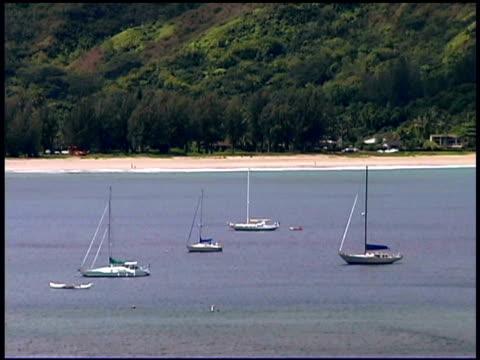 stockvideo's en b-roll-footage met sailboats in harbor - oceanië