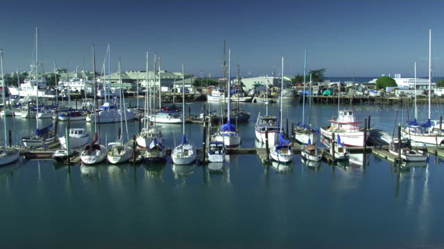 WS HA Sailboats in marina, Moss Landing, California, USA