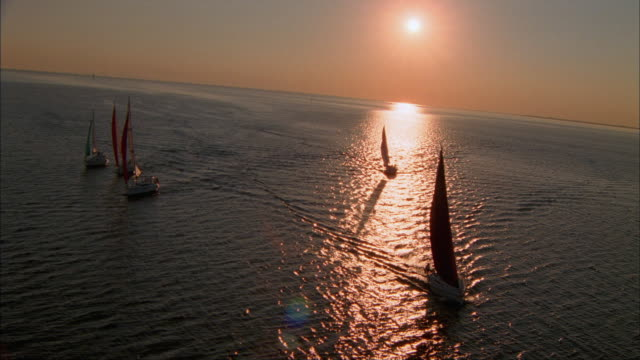 low aerial, sailboats in tampa bay at sunset, florida, usa - tampa stock videos & royalty-free footage