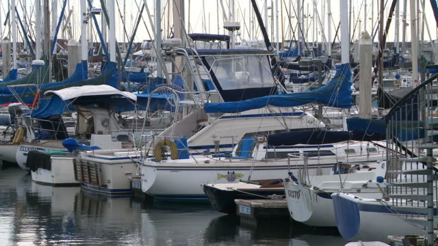Sailboats moor at marina in Santa Barbara