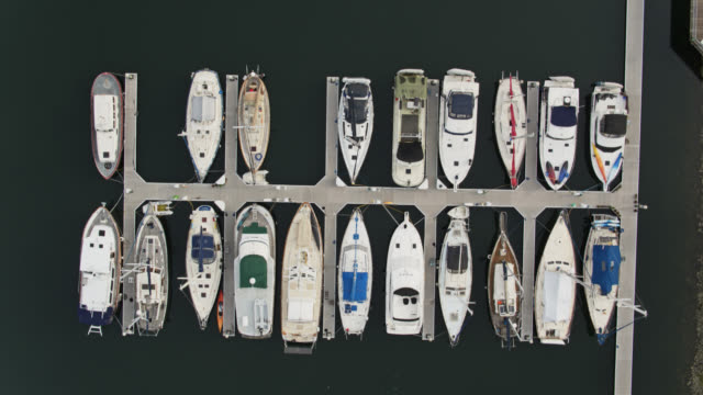 sailboats moored in marina - top down drone shot - marina stock videos & royalty-free footage