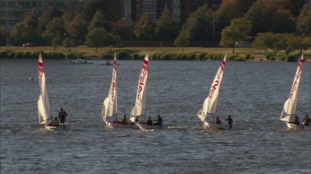 ws pan sailboats on charles river / boston, massachusetts, usa - チャールズ川点の映像素材/bロール