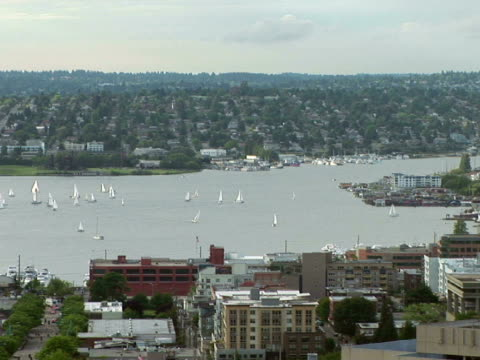 ws, sailboats on puget sound, seattle, washington state, usa - nordpazifik stock-videos und b-roll-filmmaterial