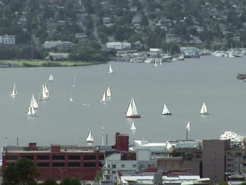 ws, sailboats on puget sound, seattle, washington state, usa - puget sound stock videos & royalty-free footage