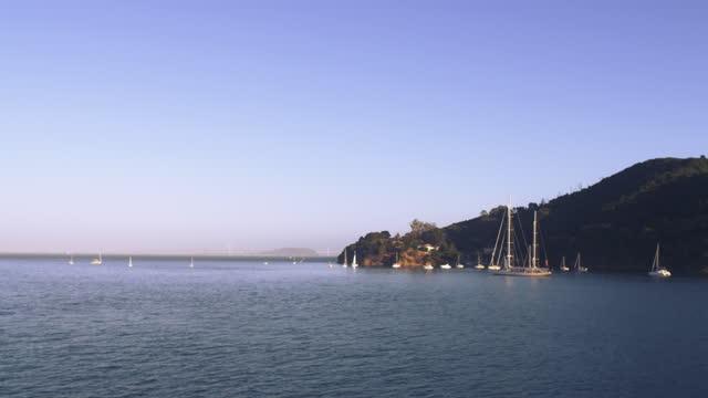 vídeos de stock e filmes b-roll de sailboats on the water with bay bridge and treasure island in the distance; mist forming in the distance - baía de são francisco