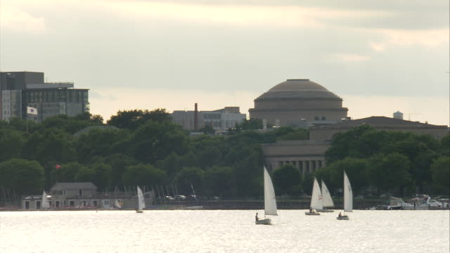 ws sailboats sailing on charles river, mit dome and campus in background / boston, massachusetts, usa - cambridge massachusetts stock videos & royalty-free footage