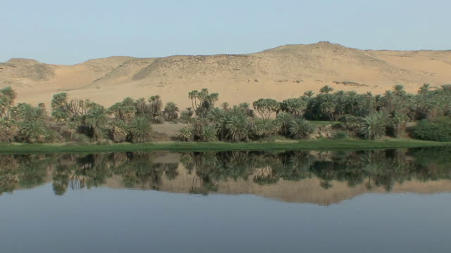 POV Sailing along Nile riverbank lined with short African palms and barren desert hills right beyond reflected in Nile's calm waters, Aswan, Egypt