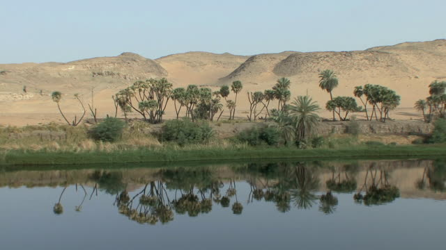 pov sailing along nile riverbank lined with short african palms and barren desert hills right beyond reflected in nile's calm waters, aswan, egypt - egypt stock videos & royalty-free footage