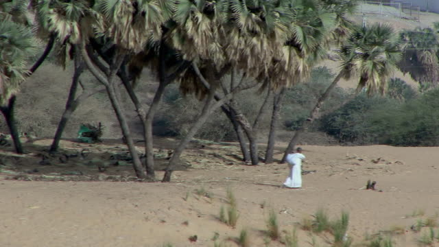 POV Sailing along Nile riverbank with palm trees, man in white djellaba walking by, Aswan, Egypt