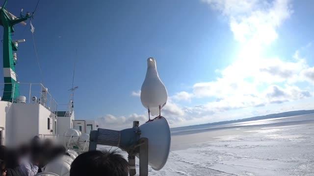 Zeilboot op bevroren zee, in de winter.