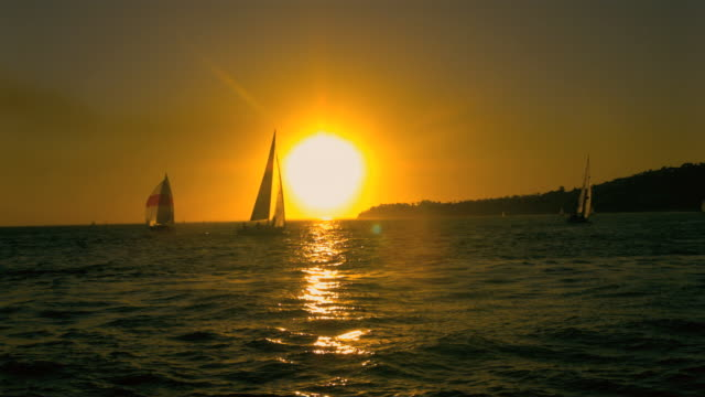 WS Sailing boats in sea at sunset / Santa Barbara, California, USA