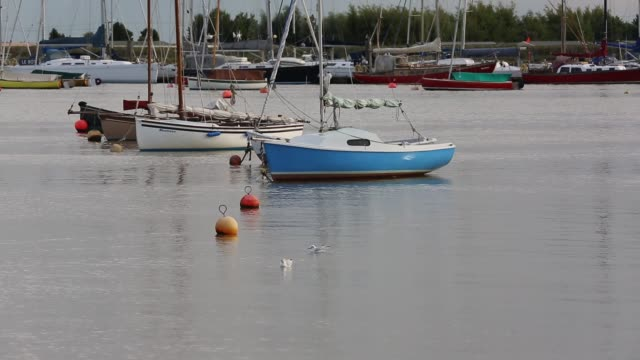sailing boats moored at brightlingsea in essex united kingdom on september 3 2015 - sailing boat stock videos & royalty-free footage