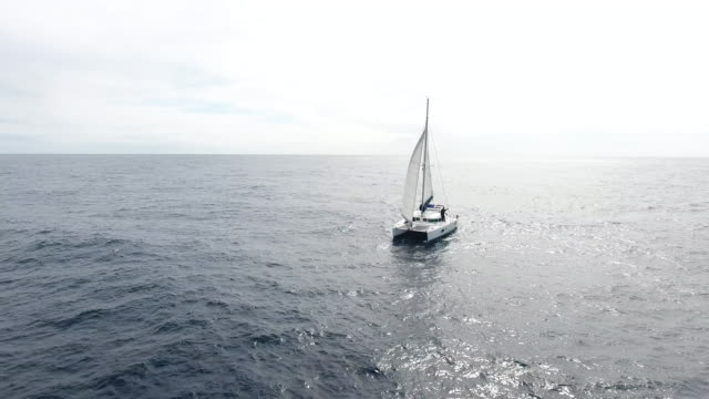 sailing catamaran in atlantic ocean - anchored stock videos & royalty-free footage