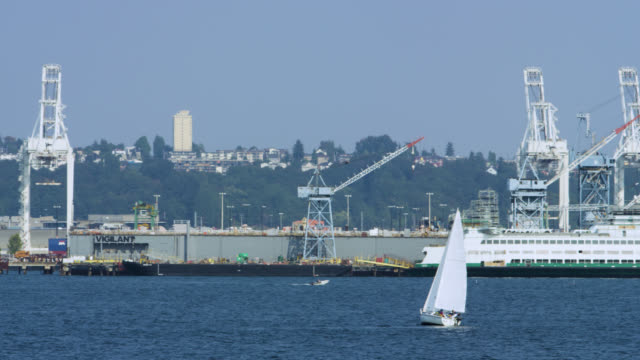 sailing in puget sound with cargo ships in the background - pacifico occidentale video stock e b–roll