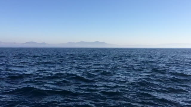 sailing in the mediterranean sea - whale watching stock videos and b-roll footage