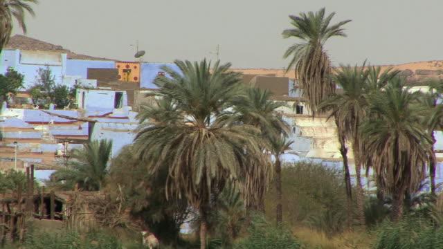 POV Sailing on Nile along Nubian village seen through palm groves, Aswan, Egypt