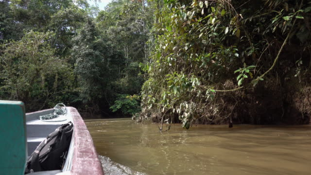 sailing on the amazon river - ecuador stock videos & royalty-free footage