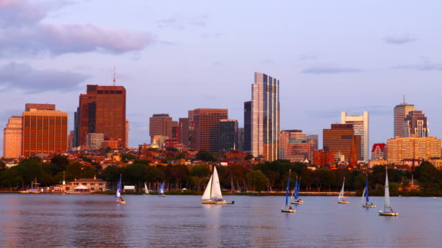 vídeos y material grabado en eventos de stock de navegando por el río charles en boston - río charles