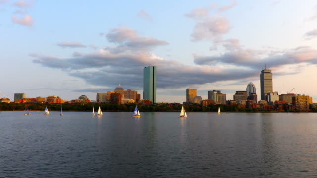 sailing on the charles river in boston - boston stock videos and b-roll footage