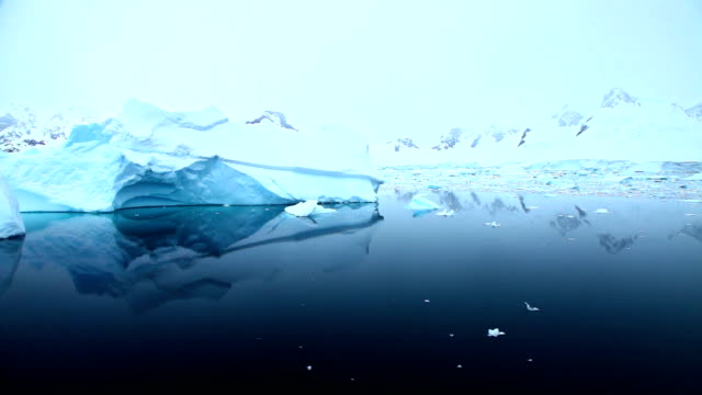 Sailing past icebergs in Antarctica