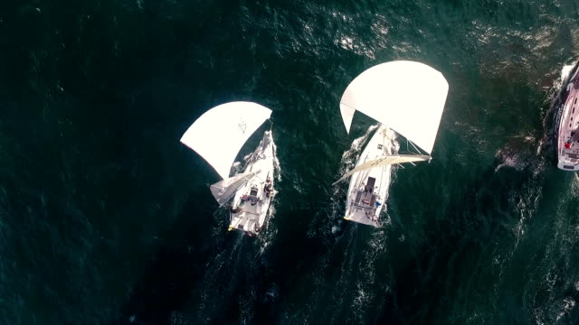 sailing race aerial view - nave a vela video stock e b–roll