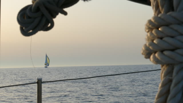 sailing race in the evening sea