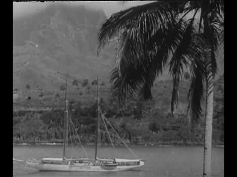 sailors folding sails/ boat in harbor - french polynesia stock videos & royalty-free footage