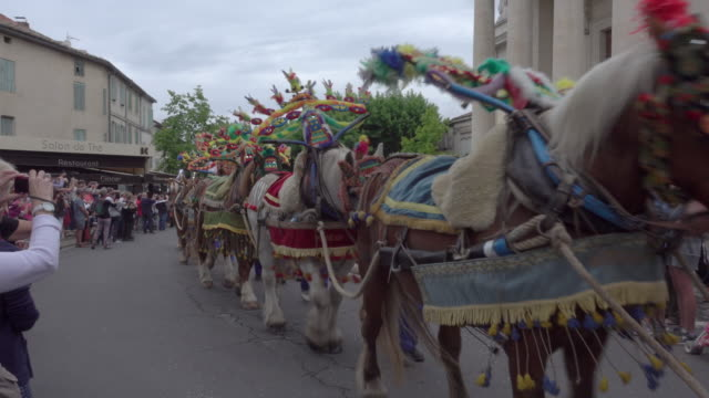 Saint-Eloi Horses Parade in the Provence
