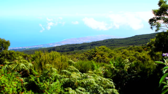 saint-paul de la reunion from maïdo mountain - réunion french overseas territory stock videos & royalty-free footage