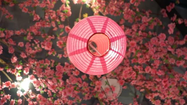 桜と提灯 - 太白桜点の映像素材/bロール